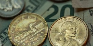 cad-bank-notes-and-coins - CAD
