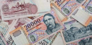 hungarian forint bank notes - HUF