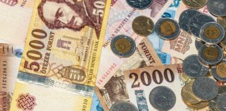 hungarian-forint-bank-notes